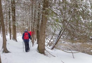 Winter Hike Schedule